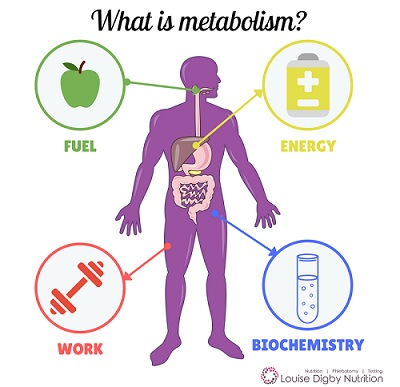 Μεταβολισμός: 10 κοινές τροφές που τον απορυθμίζουν