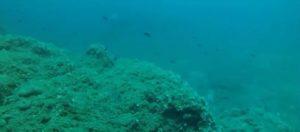 Αποχαρακτηρισμένα σοβιετικά έγγραφα αποκαλύπτουν «εξωκοσμική» δραστηριότητα και «περίεργα» αντικείμενα στους ωκεανούς!