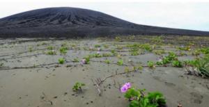 NASA: Νέο νησί του Ειρηνικού στο επίκεντρο των ερευνών της