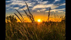 Ο Ήλιος σε φάση «ηλιακού ελάχιστου»: Τι σημαίνει αυτό για τη θερμοκρασία στη Γη