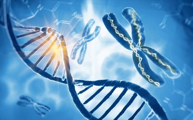 Εξαγωγή DNA από έντομα που είχαν παγιδευτεί σε ρετσίνι δέντρου