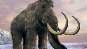 Σιβηρία: Επιστήμονες ανακάλυψαν το αρχαιότερο DNA στα απομεινάρια δύο μαμούθ