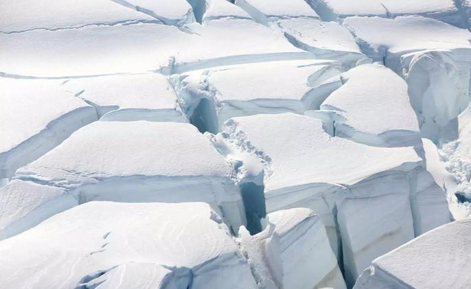 Ανταρκτική: Βρέθηκαν μυστήρια ζώα βαθιά κάτω από τους πάγους (pic)