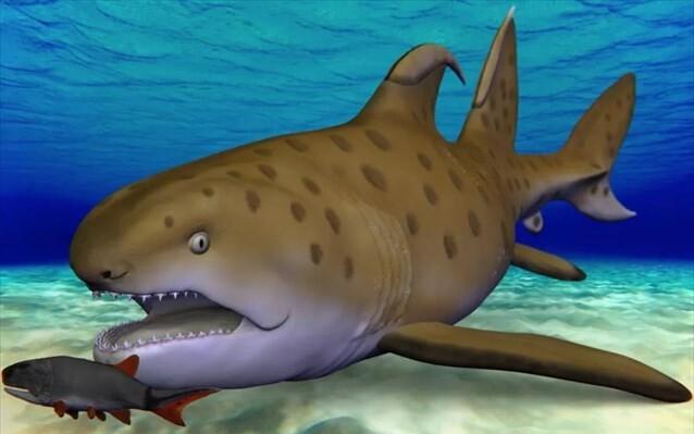 Βαφτίστηκε ο καρχαρίας Γκοτζίλα