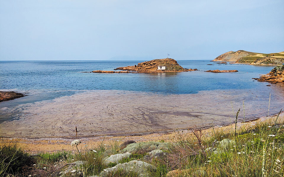 Θαλάσσια βλέννα στη Λήμνο: Κλιμάκιο Επιθεωρητών Περιβάλλοντος μεταβαίνει αύριο στο νησί