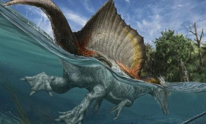 Και όμως: Δεινόσαυροι κολυμπούσαν σε ποτάμια της Αφρικής