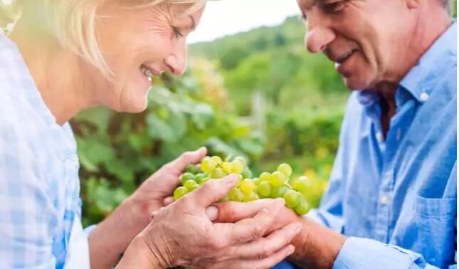 Αλτσχάιμερ: Αυξημένη προστασία για όσους τρώνε σταφύλια κάθε μέρα